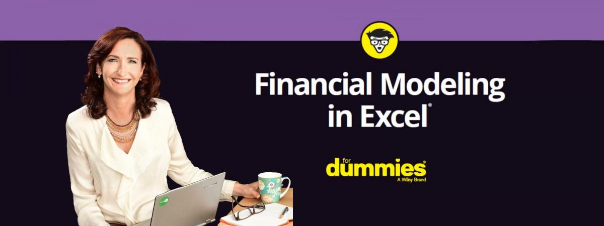 Book Launch Party - Financial Modeling in Excel for Dummies